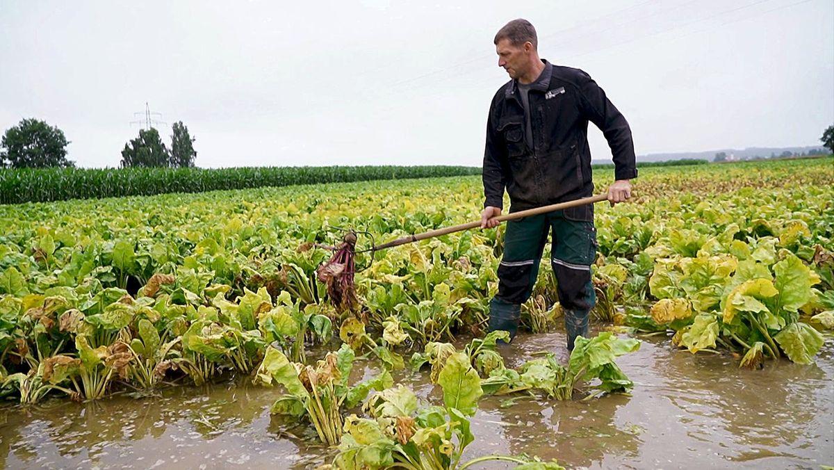 Überschwemmte Felder gefährden die Ernte 2021