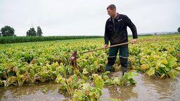 Überschwemmte Felder gefährden die Ernte 2021   Bild:BR