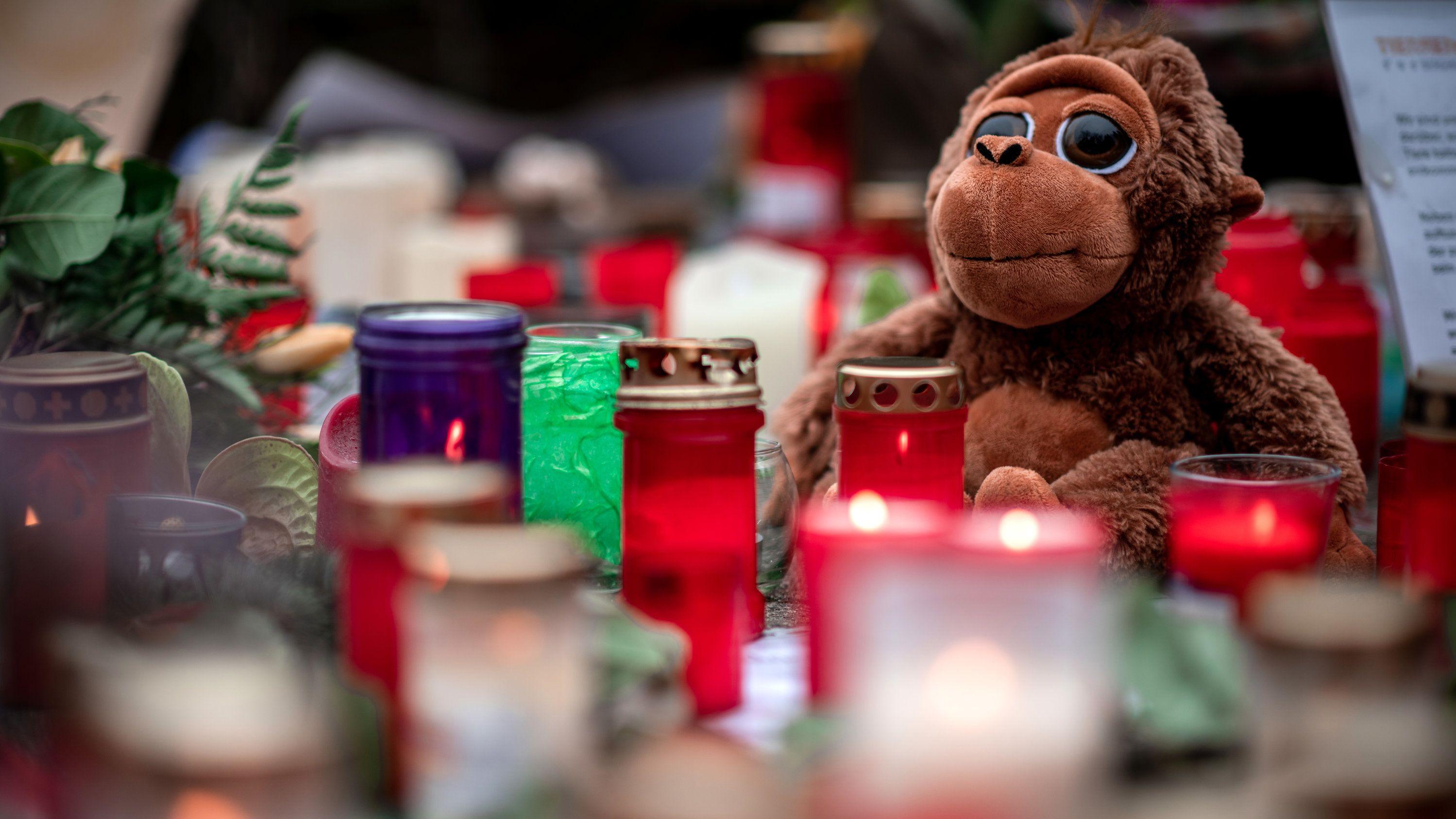 Ein Plüschaffe sitzt zwischen Kerzen, die als Zeichen der Trauer vor dem Krefelder Zoo aufgestellt wurden.