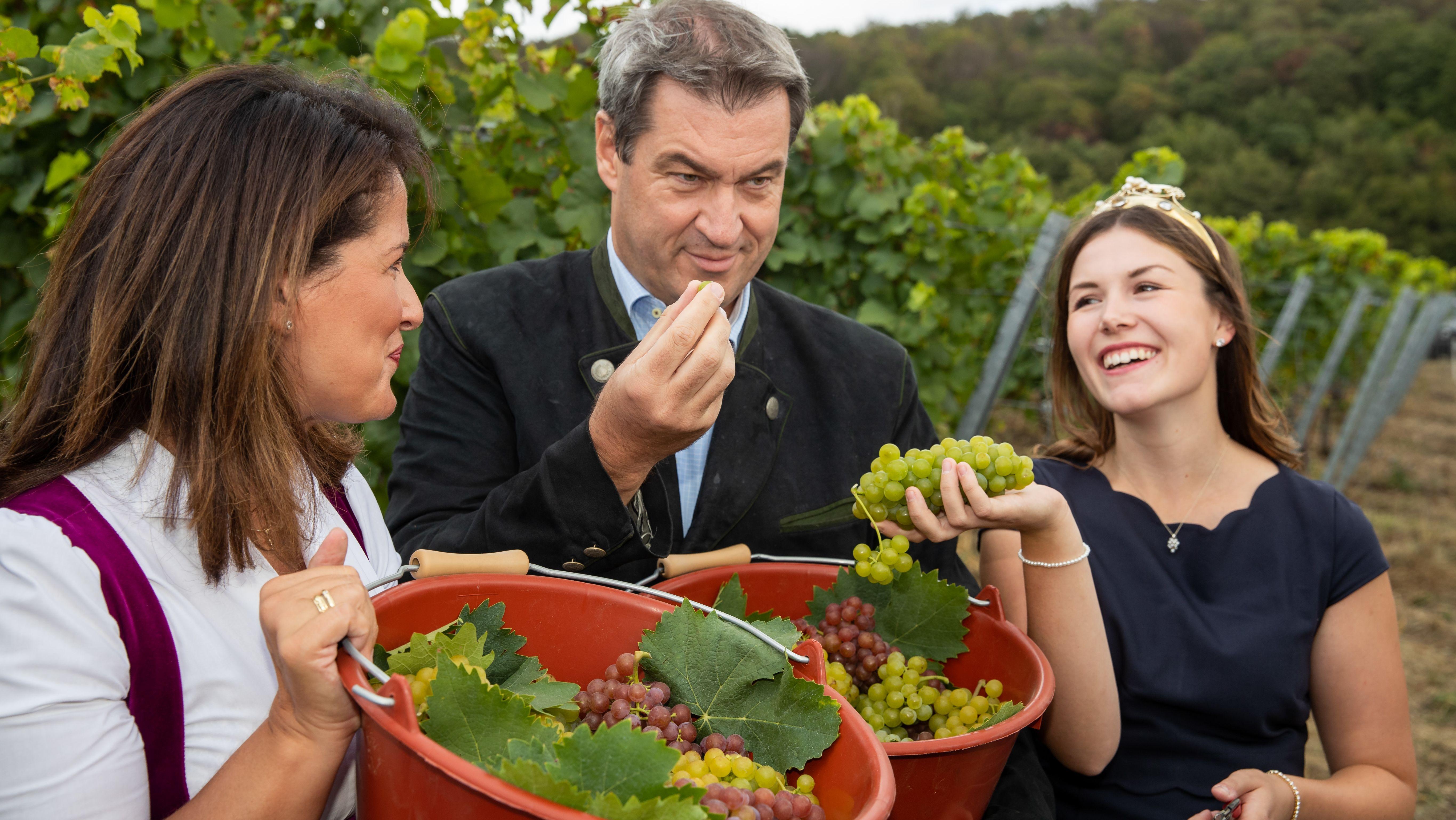 Markus Söder, Ministerpräsident von Bayern, Michaela Kaniber, Landwirtschaftsministerin von Bayern (links)  und Carolin Meyer, Fränkische Weinkönigin, stehen während der offiziellen Eröffnung der fränkischen Weinlese 2019.