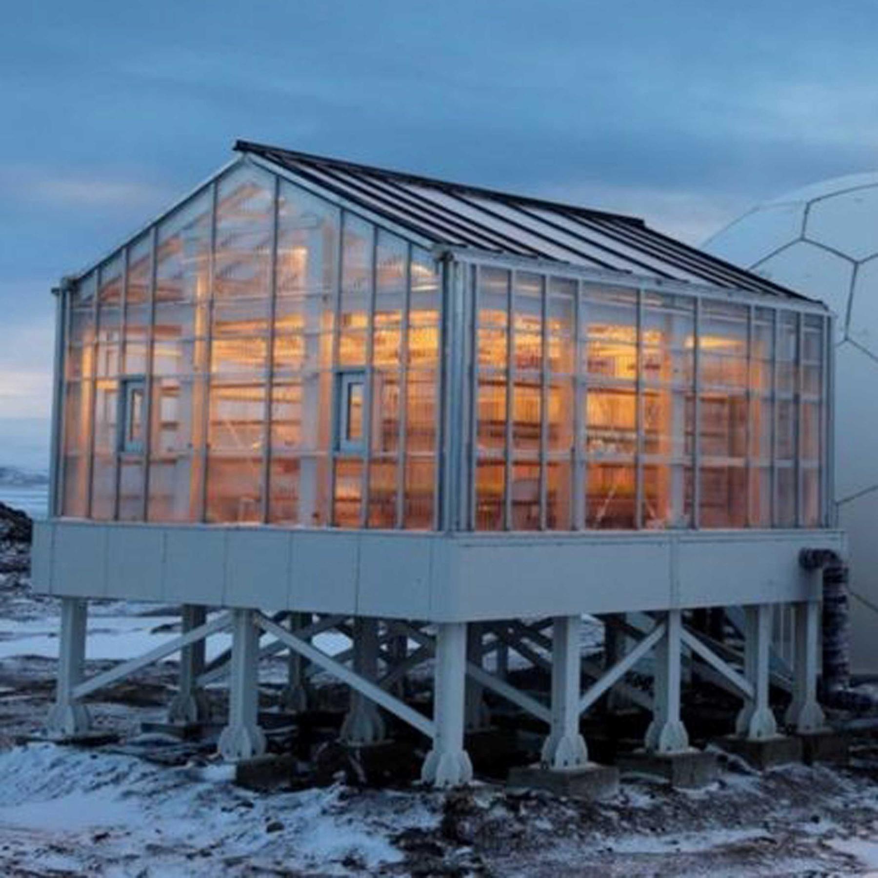Pflanzenzucht auf dem Mond - Antarktis-Gewächshaus EDEN ISS startet neue Mission