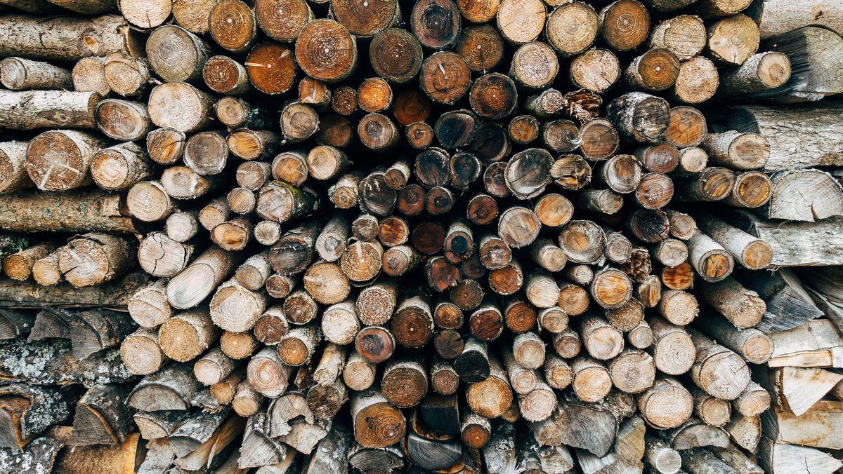 Der Rohstoff Holz erzielt schwindelerregende Preise und ist weltweit knapp. Gleichzeitig begrenzt eine Verordnung, wie viel Holz in Deutschland gefällt werden darf.