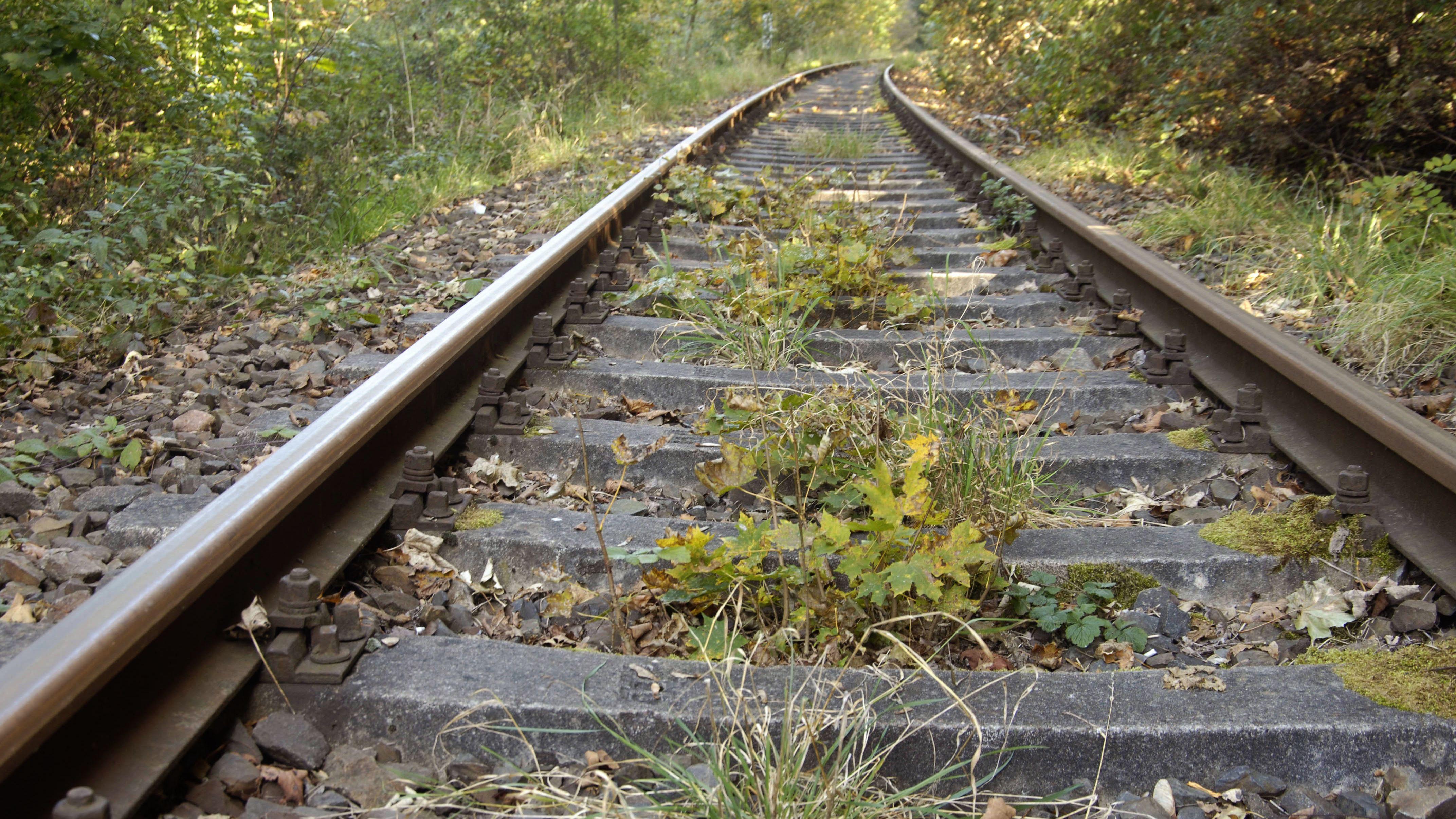 Ungenutzte Bahnstrecke (Symbolbild)