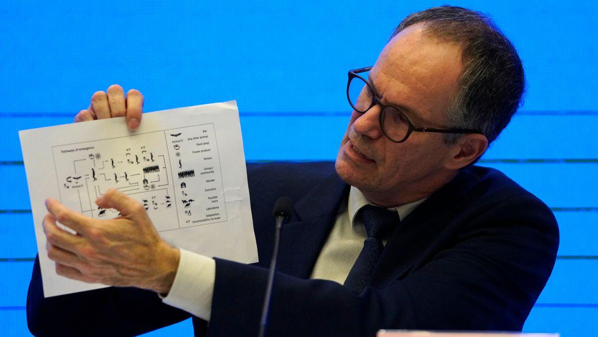 Peter Ben Embarek, Chef des Experten-Teams, hält während einer Pressekonferenz eine Grafik hoch, die die Übertragungswege des Coronavirus zeigt.