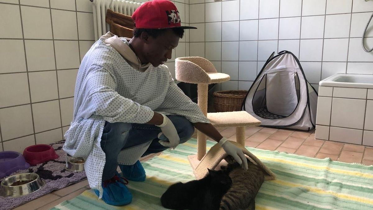 Mohammed aus Ghana hat in Deutschland keine Bleibeperspektive, weil er aus einem sicheren Herkunftsland kommt. Trotzdem arbeitet er jeden Tag im Nördlinger Tierheim.
