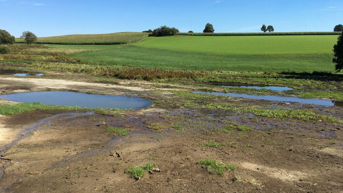 Auf einer weiten Fläche ist ein Moor mit feuchtem Erdreich und Pfützen zu sehen.
