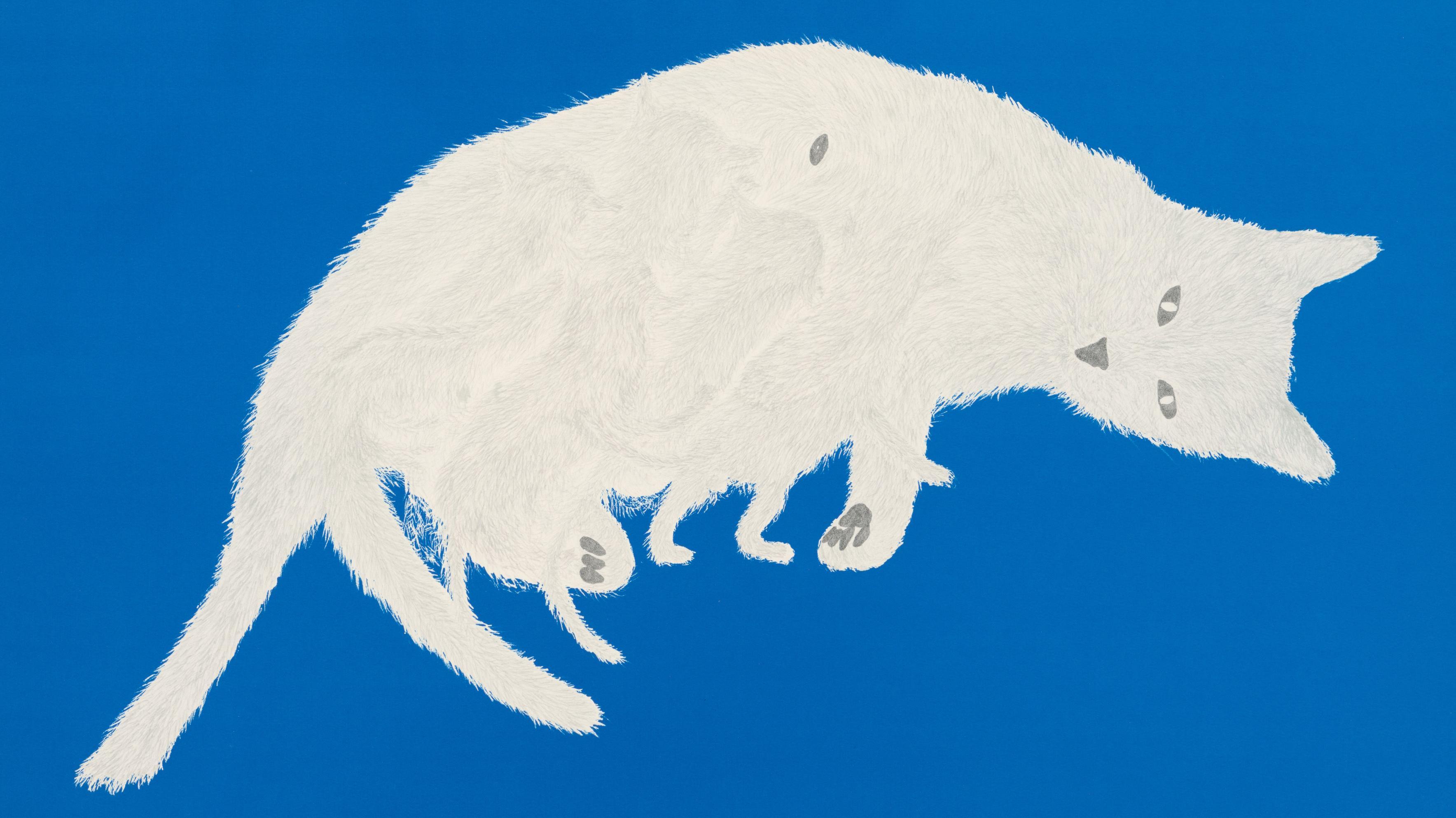 Druckgrafik mit weißer Katze auf blauem Grund