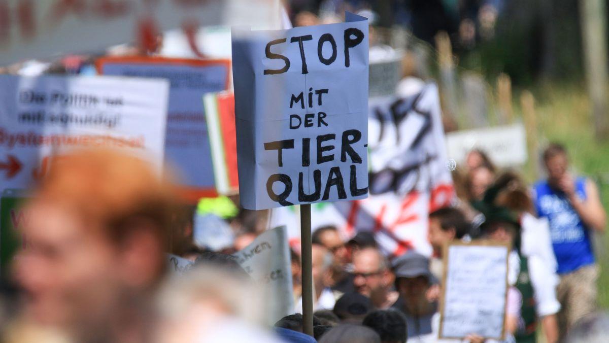 Empörte Öffentlichkeit über Tierskandal in Bad Grönenbach