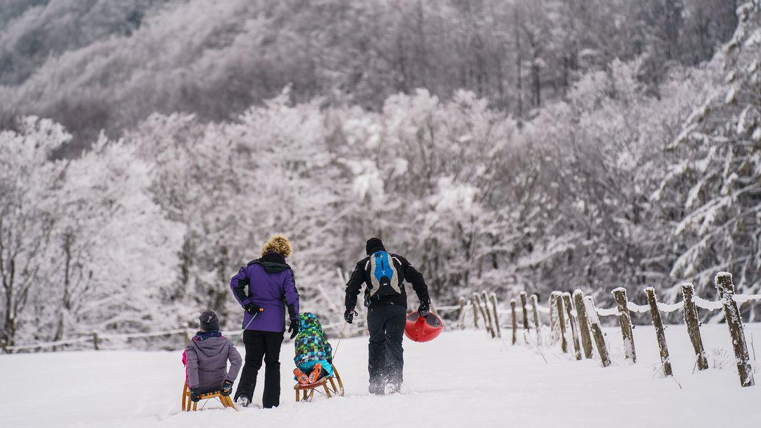 Die Wintersportler setzen in diesem Winter vermehrt aufs Schlittenfahren.
