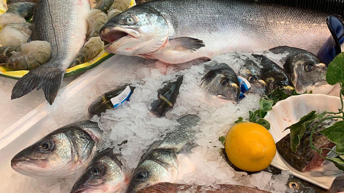 Fisch angerichtet auf Eis
