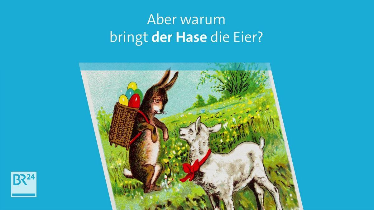An Ostern feiern Christen, dass Jesus von den Toten auferstanden ist. Aber warum bringt der Hase die Eier?
