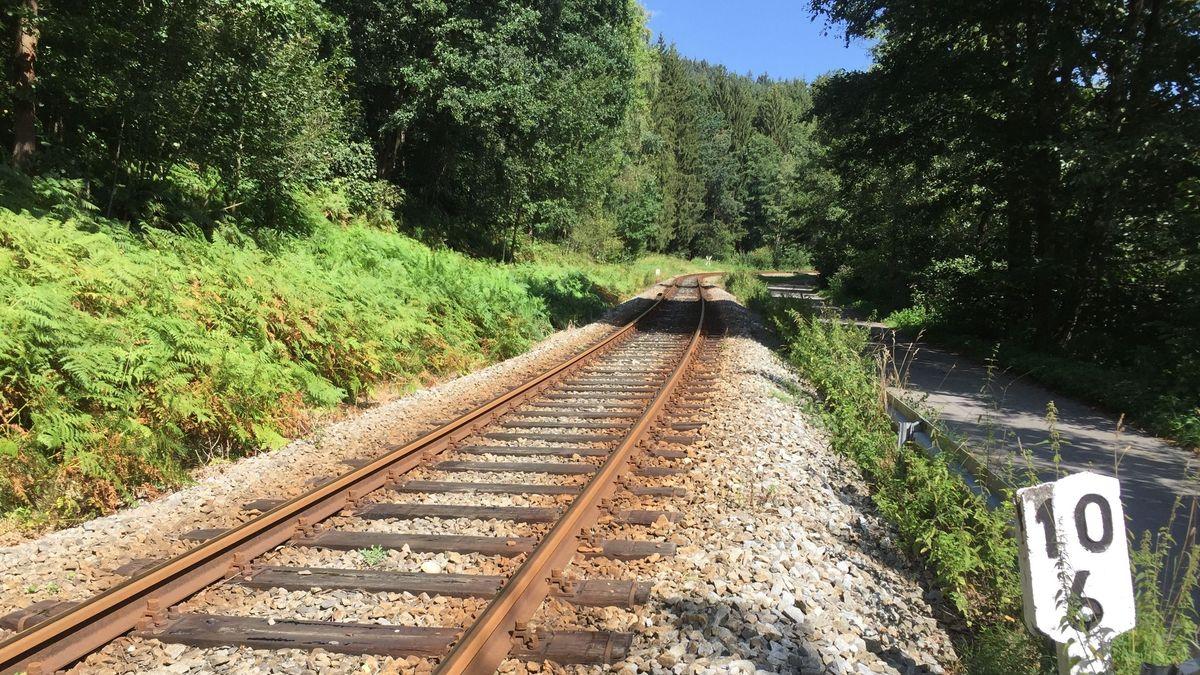 Die Waldbahn-Strecke zwischen Gotteszell und Viechtach im Bayerischen Wald steht vor dem Aus.