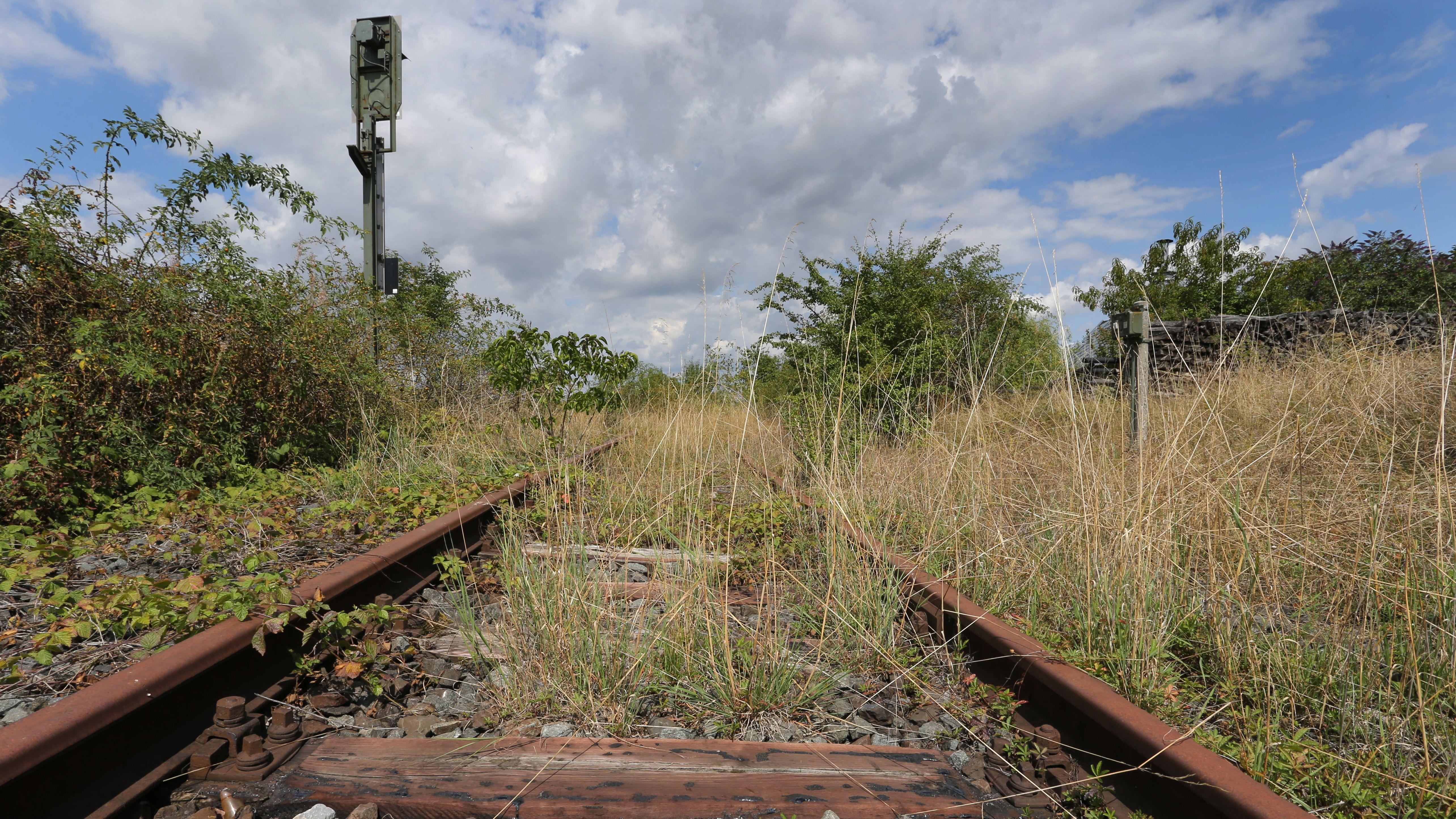 Zwischen verrosteten Bahngleisen wächst Gras