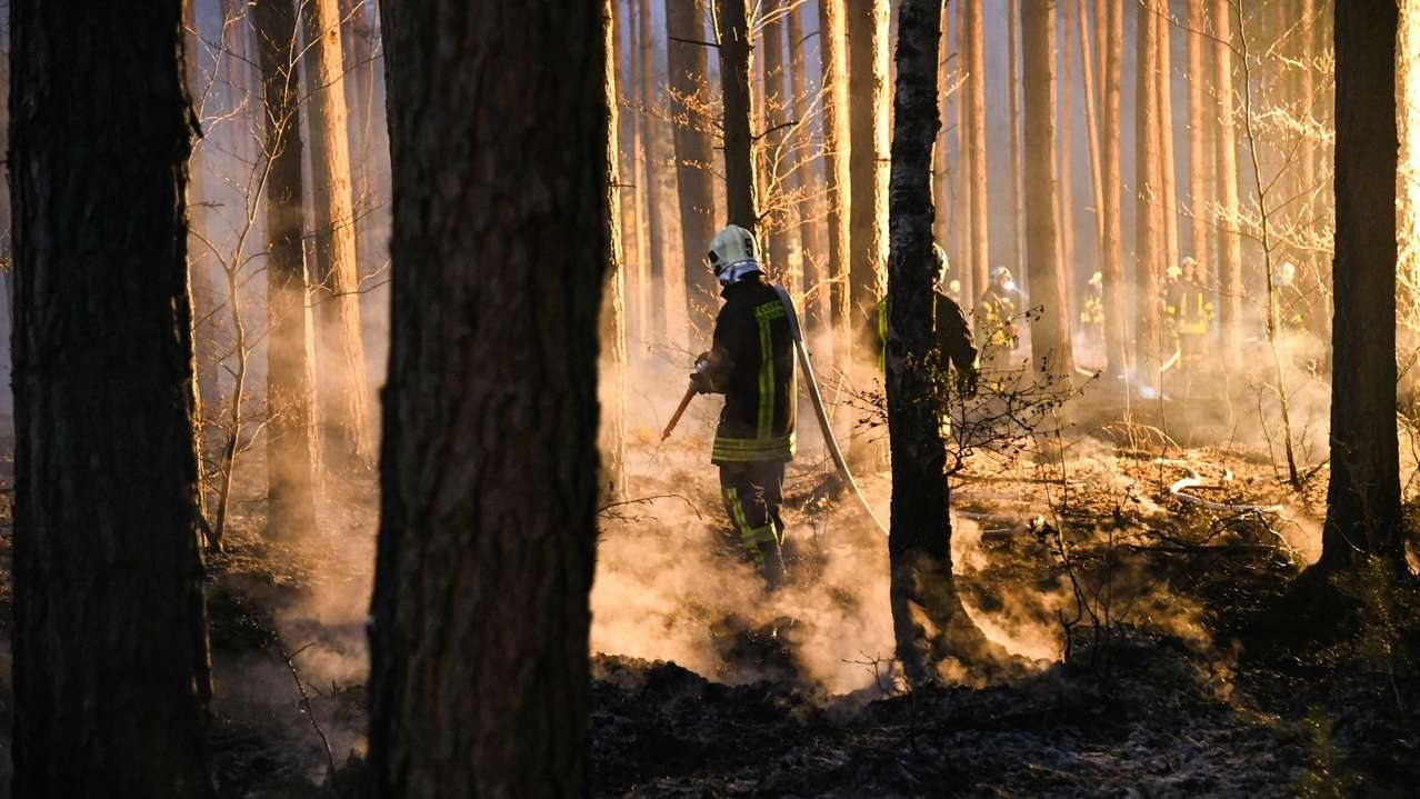 Waldbrandgefahr: Regierung ordnet Beobachtungsflüge an