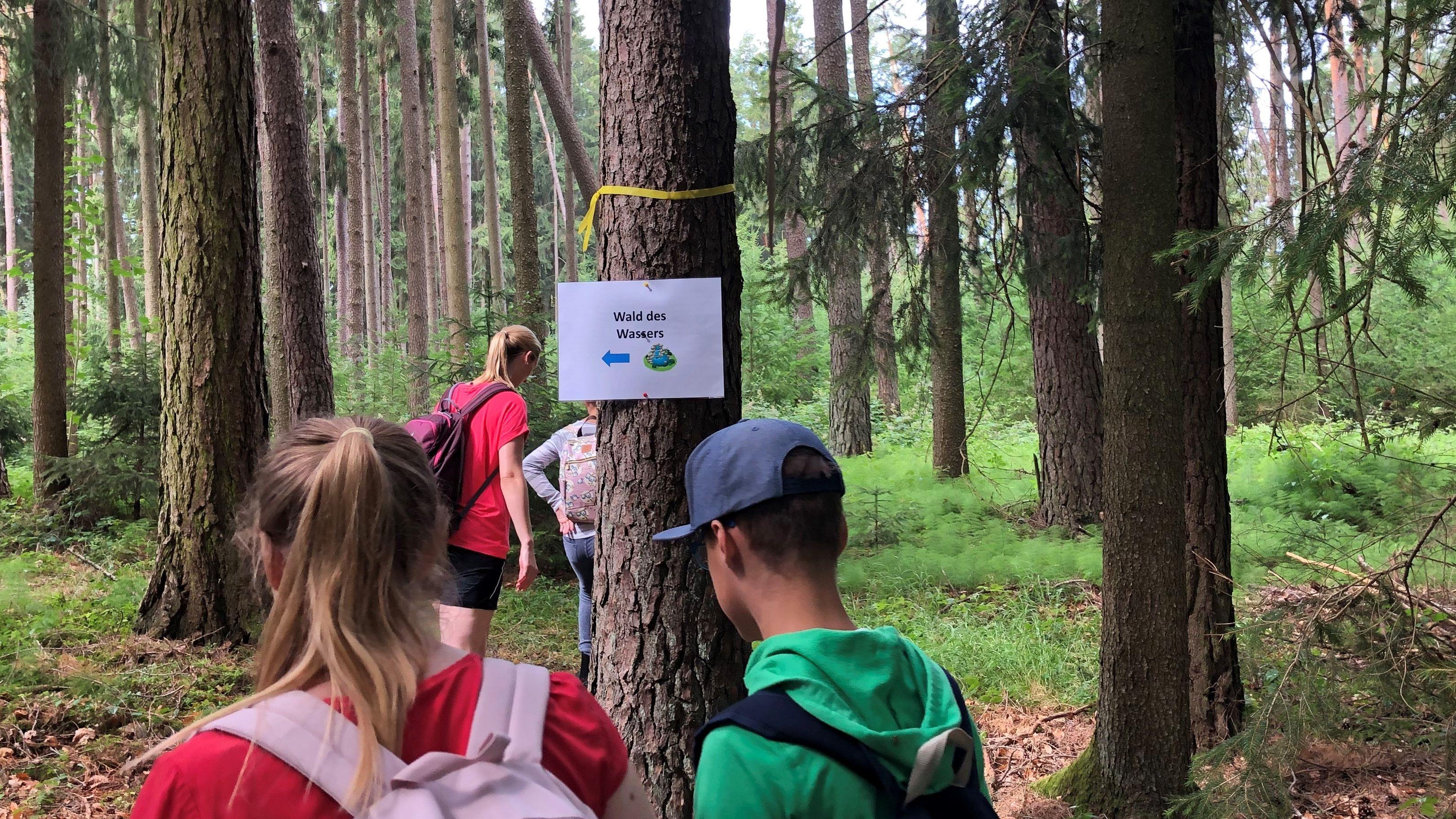 Kinder auf einem Lehrpfad durch den Wald