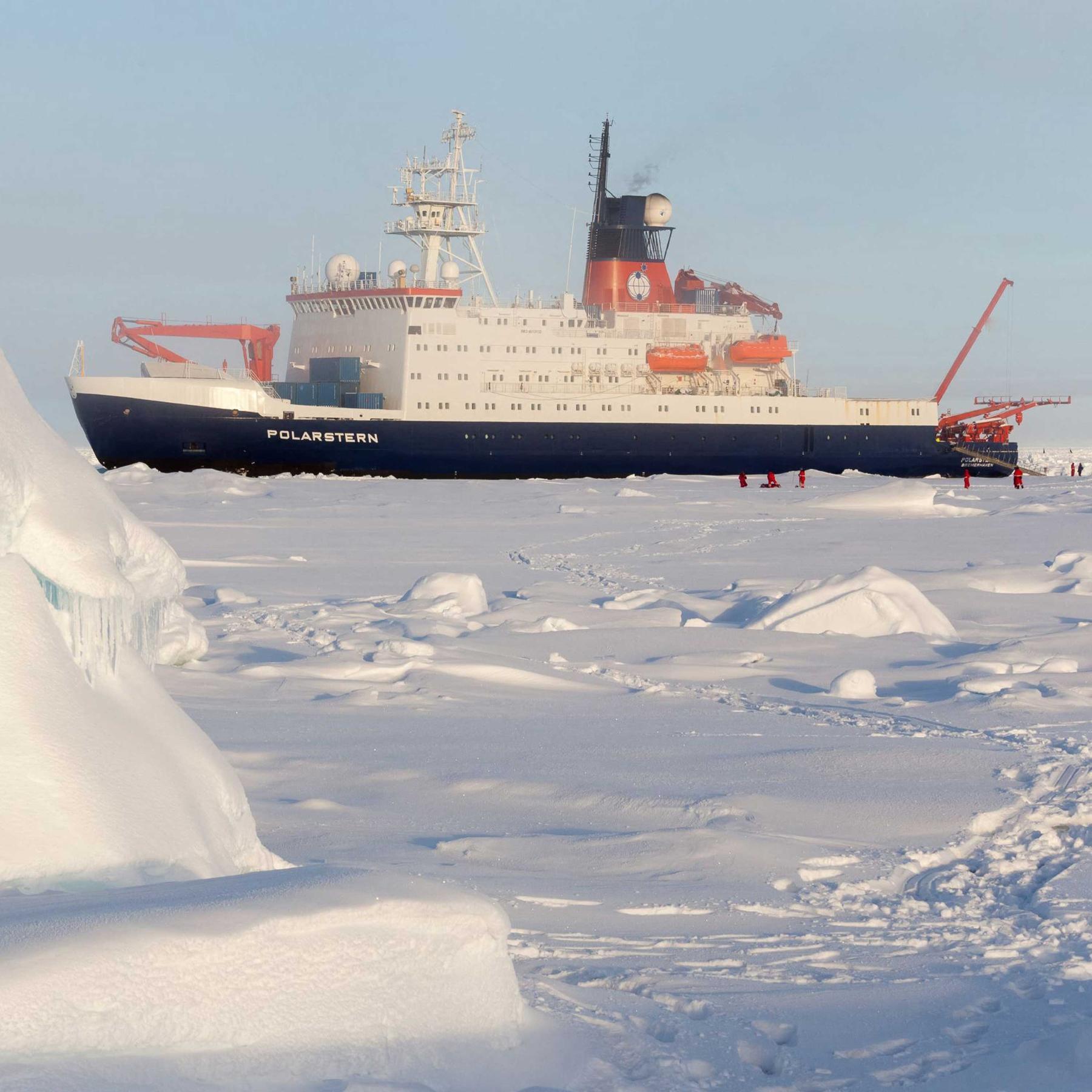 """Antarktis-Expedition - Forschungsschiff """"Polarstern"""" erkundet erstaunliche Lebensvielfalt"""