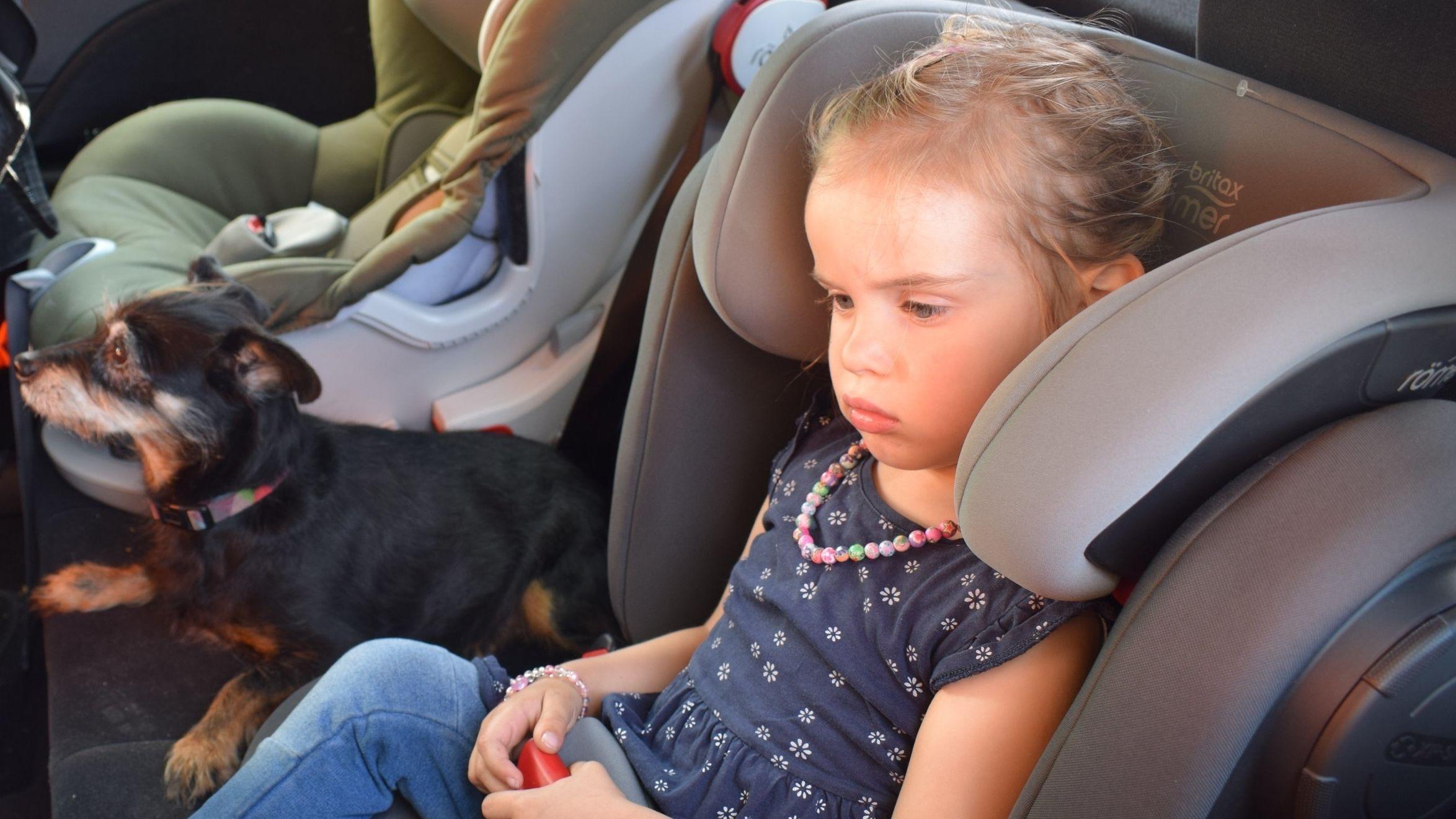 Symbolbild: Hitze - Kinder und Tiere im Auto