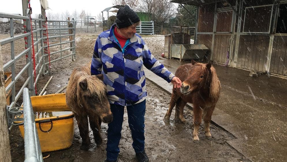 Waltraud Albert mit zwei Ponys auf einer Koppel des Gnadenhofs Pferdsfeld (Lkr. Lichtenfels).   Bild:BR-Studio Franken/Markus Klingele