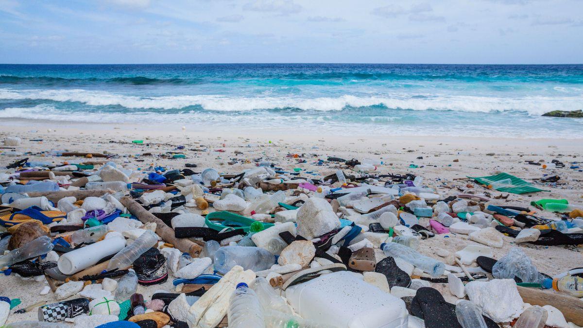 Plastikmüll an der Küste von Australien