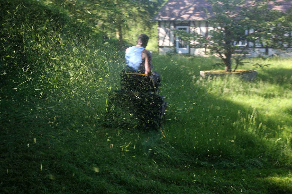 Ein Mann fährt auf einem Rasenmäher, dabei fliegt gemähtes Grad durch die Luft.
