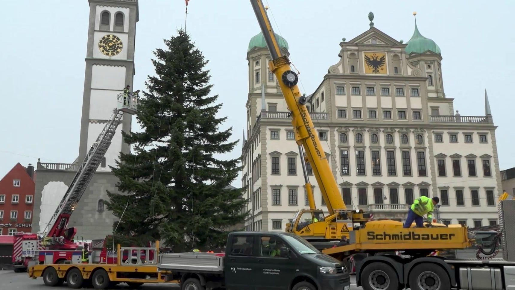 Auf dem Augsburger Rathausplatz ist der Christbaum aufgebaut worden