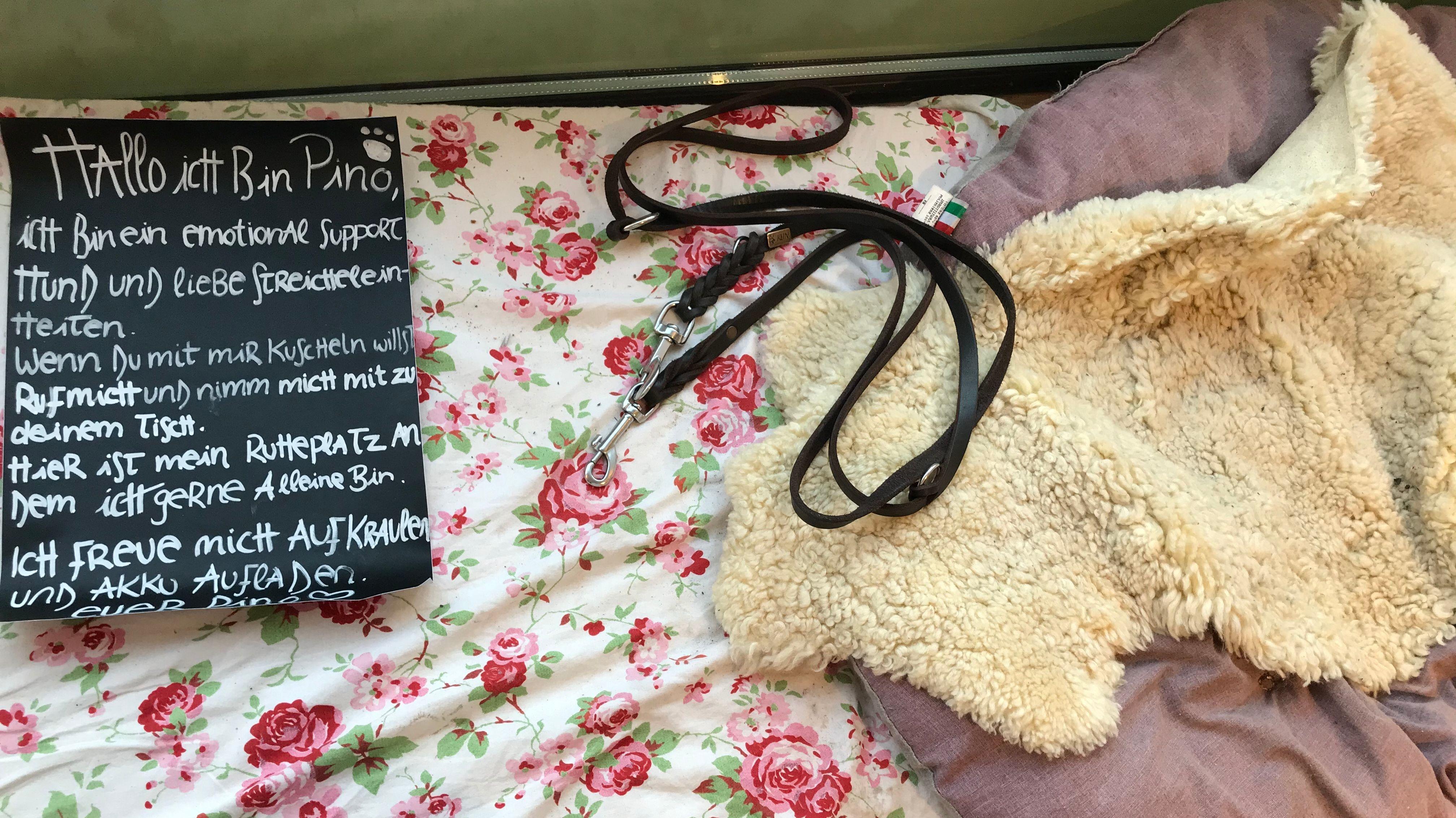 Schlafplatz für den Café-Hund Pino. Dort liegt seine Leine und ein Schild. Auf dem steht, dass Pino ein Hund für emotionale Unterstützung ist und Streicheleinheiten liebt. Gäste können ihn gerne mit zu sich an den Tisch nehmen.
