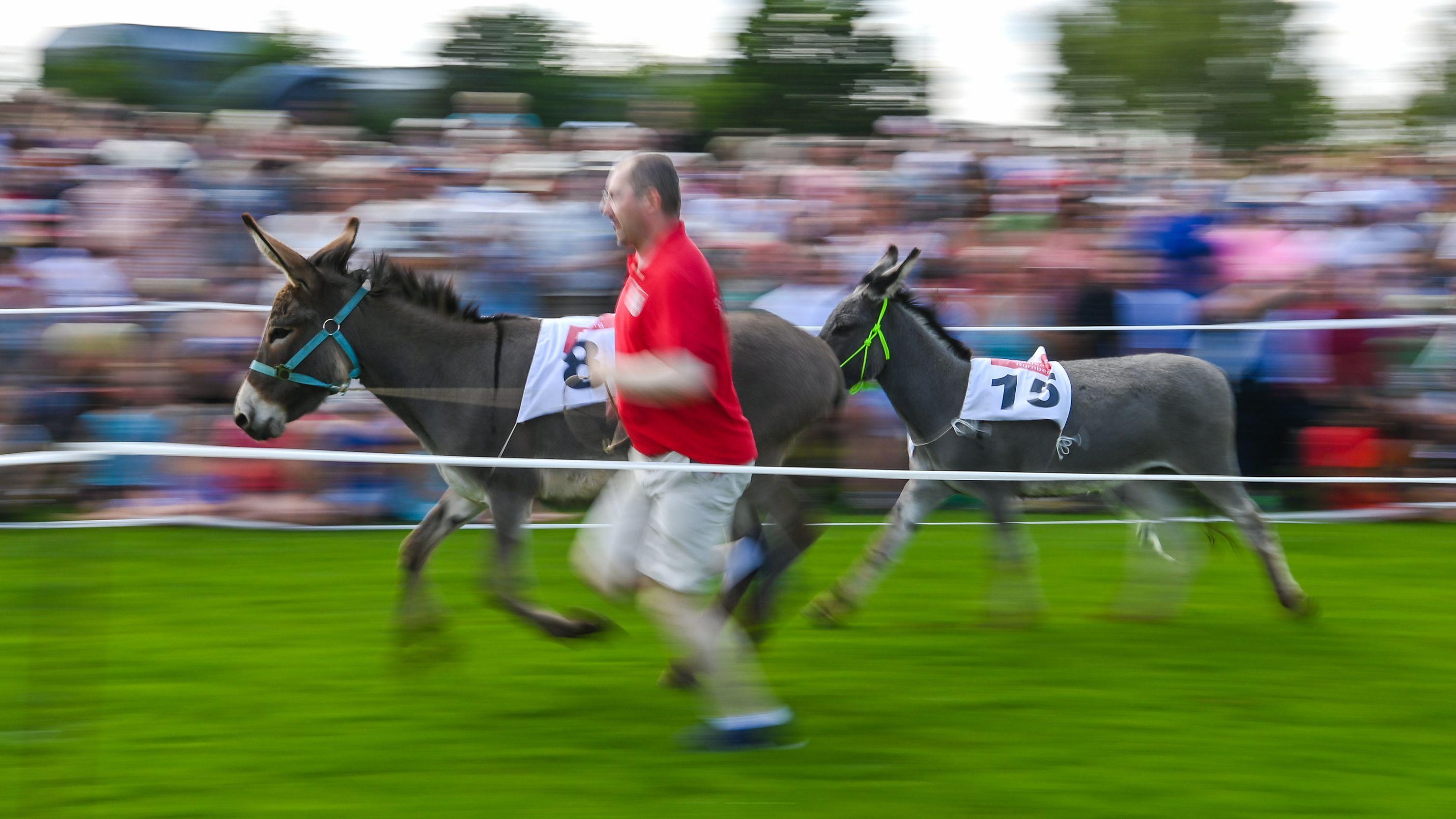 Hersbrucker Eselrennen