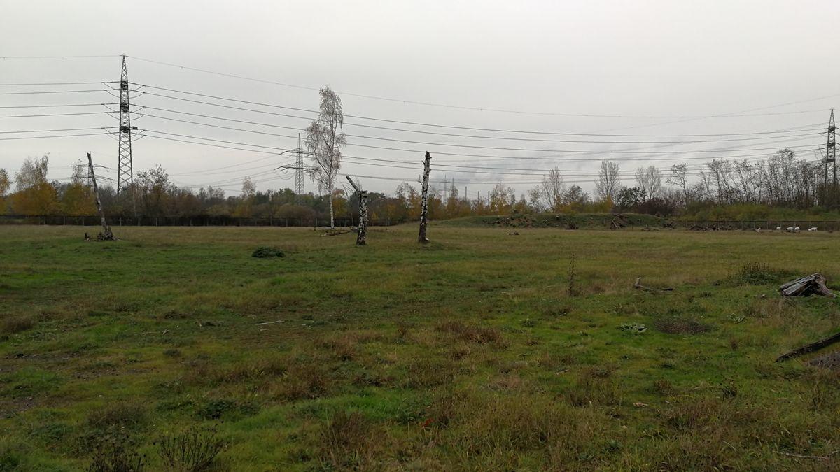 Wo früher der Versuchsreaktor stand, ist heute grüne Wiese.