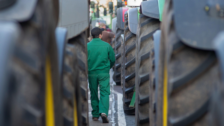 Ein Landwirt geht bei einer Schlepperdemo neben den Fahrzeugen entlang.