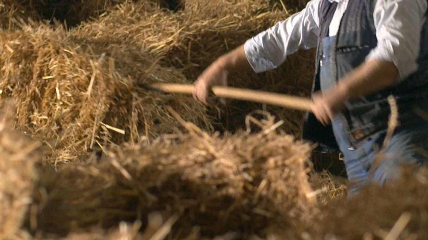 Ein Bauer wendet Strohballen (Symbolbild)