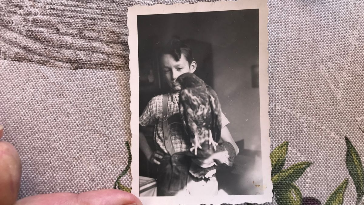 Peter Alzinger als Kind mit seinem Mäusebussard.