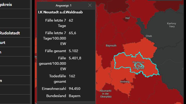 Screenshot Dashboard des Robert-Koch-Instituts - der Landkreis Neustadt an der Waldnaab mit einer Inzidenz von 65,6.