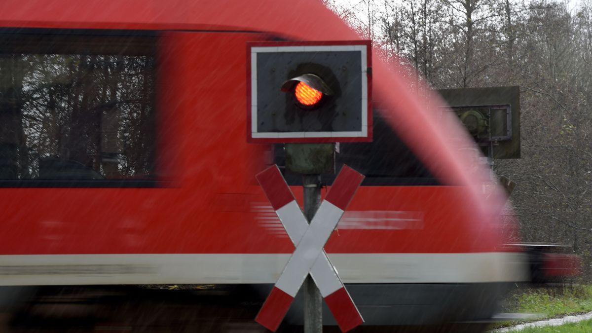 Ein Zug fährt an einem unbeschrankten Bahnübergang vorbei.