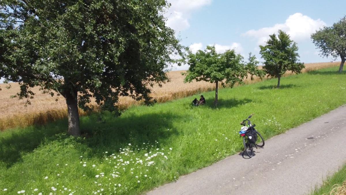Felder und Wiese mit Obstbäumen, davor ein Radweg und ein bepacktes Fahrrad.