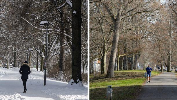 Eine Spaziergängerin geht am 10.02. 2021 über den verschneiten Göttinger Stadtwall. Am 23. 02.2021 läuft ein Jogger in Shorts an selber Stelle vorbei.