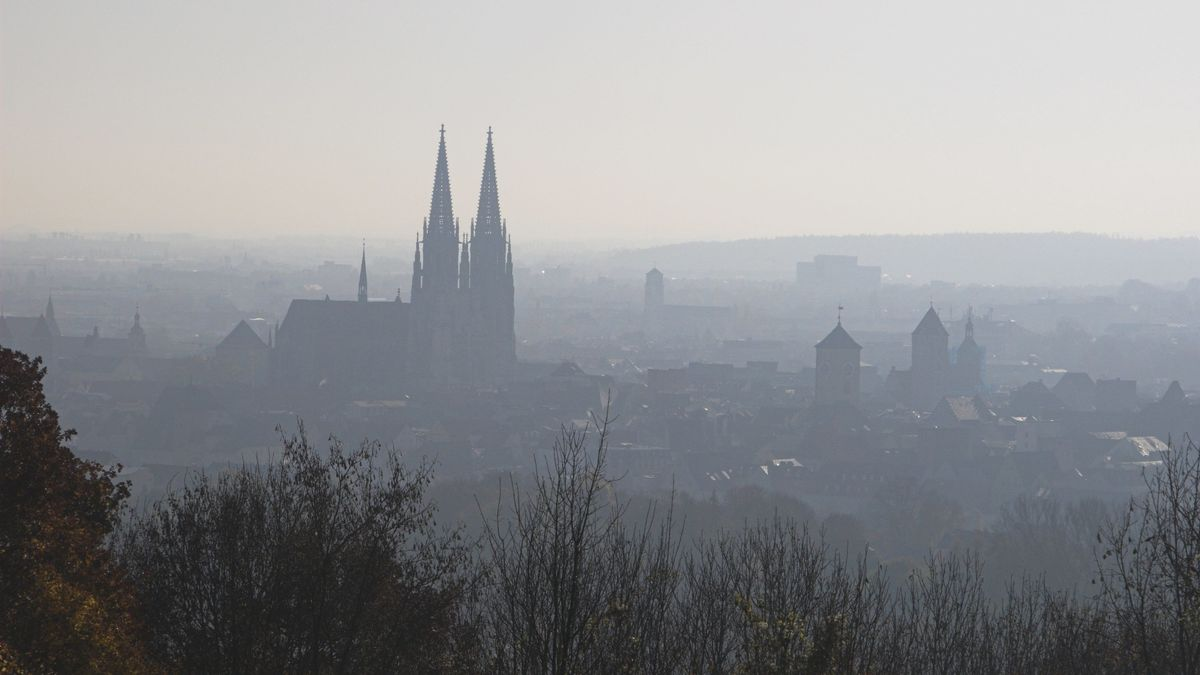Blick auf Regensburg im Nebel
