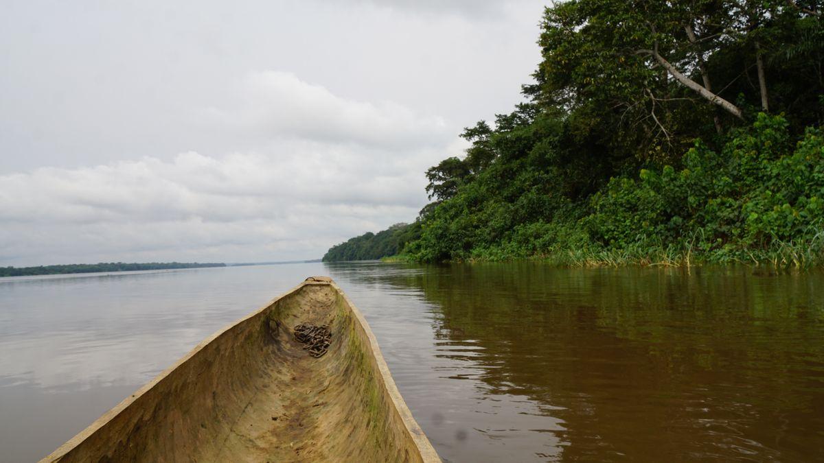 Fluss in Kisangani, im Nordosten der Demokratischen Republik Kongo, ehemals Zaire.