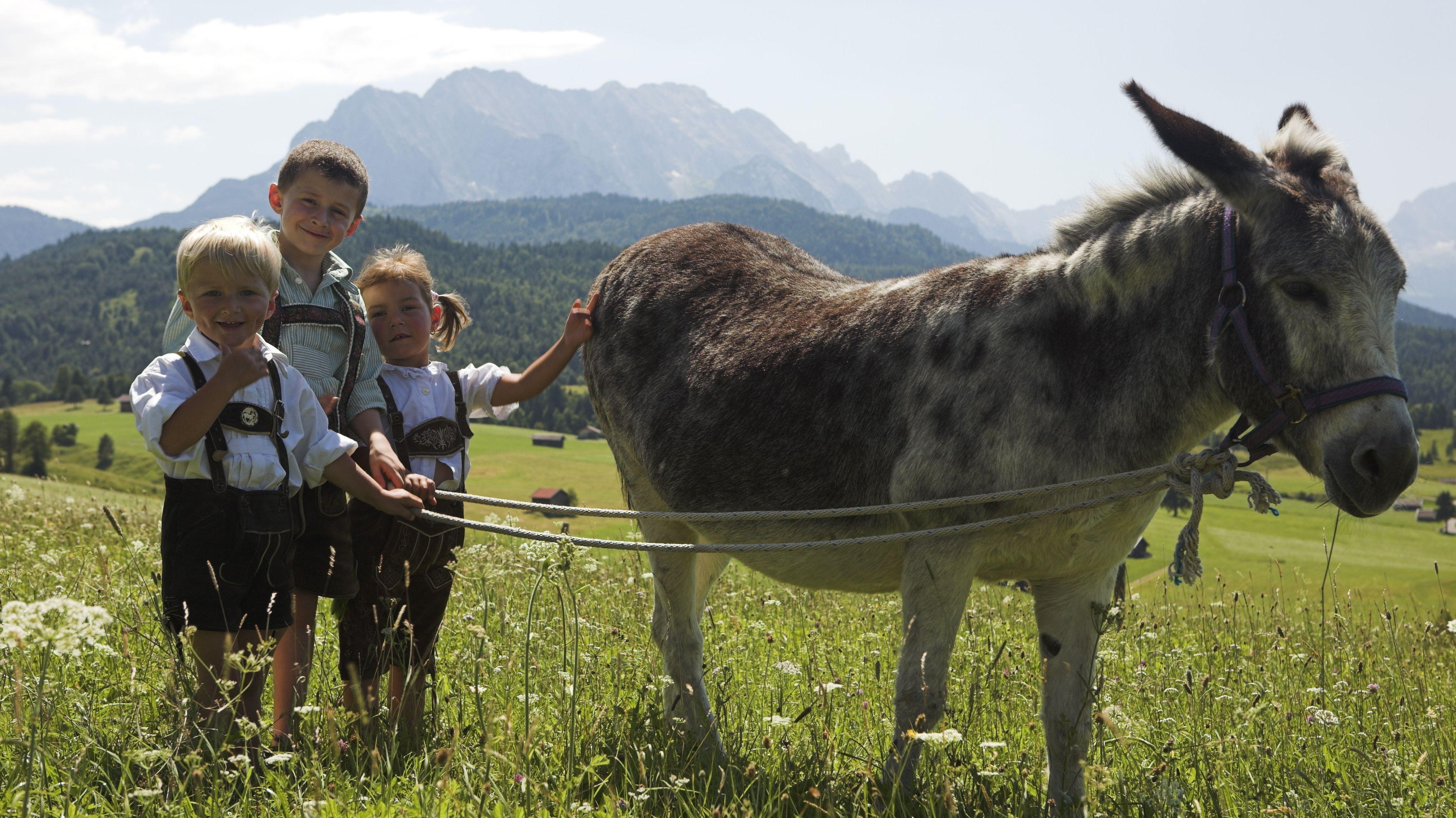Urlaub auf dem Bauernhof mit Kind und Esel