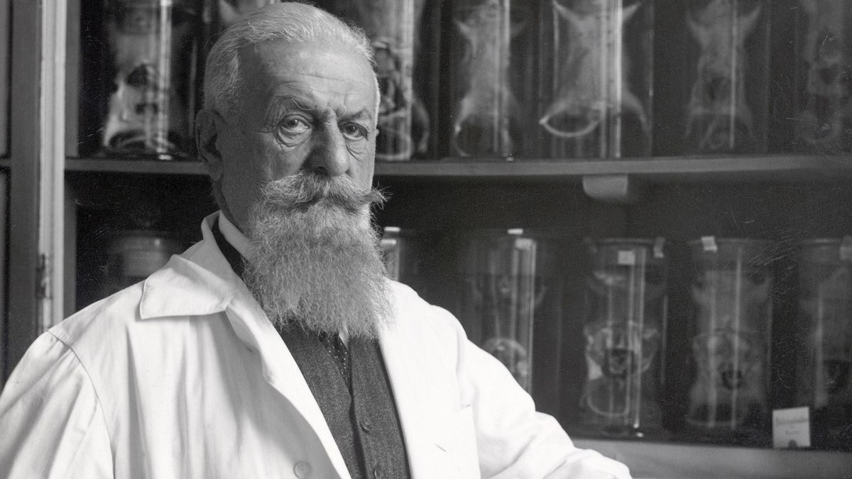 Eugen Steinach - Wegbereiter der Anti-Baby-Pille