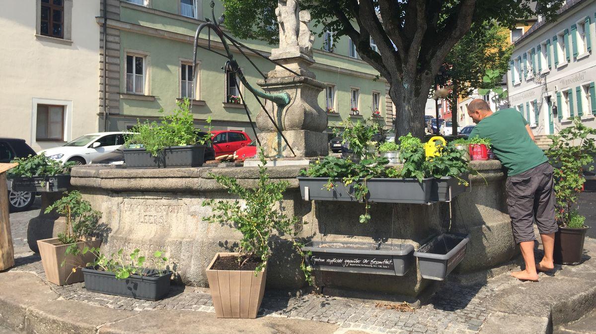 An einem Brunnen in Wunsiedel stehen Blumenkästen