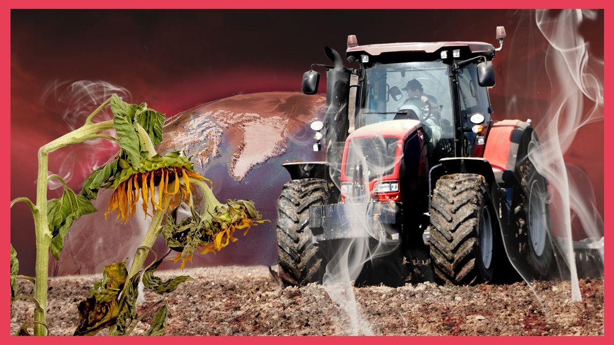 Ein Traktor fährt auf einem dampfenden Boden. Im Vordergrund sind Sonnenblumen zu sehen, die die Köpfe hängen lassen. Im Hintergrund eine geschundene Erde.