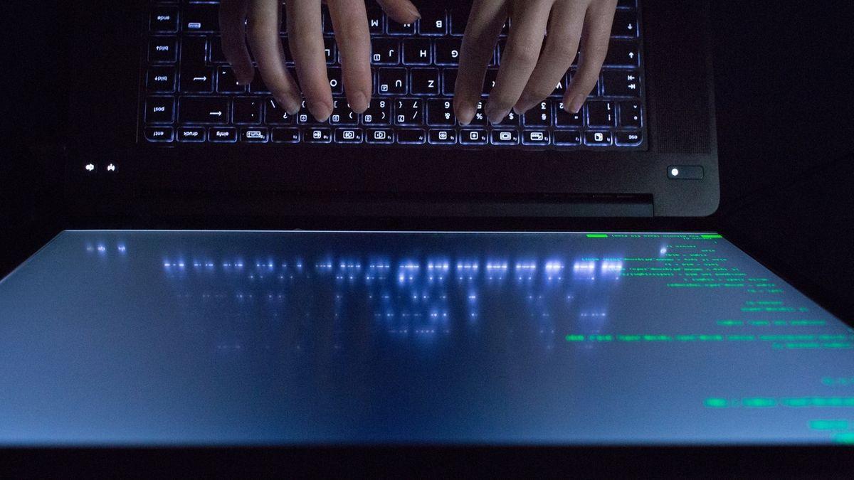 Kriminalität im Netz nimmt stark zu