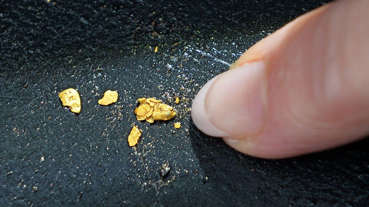 Finger deutet auf kleine ausgewaschene Goldnuggets (Symbolbild).