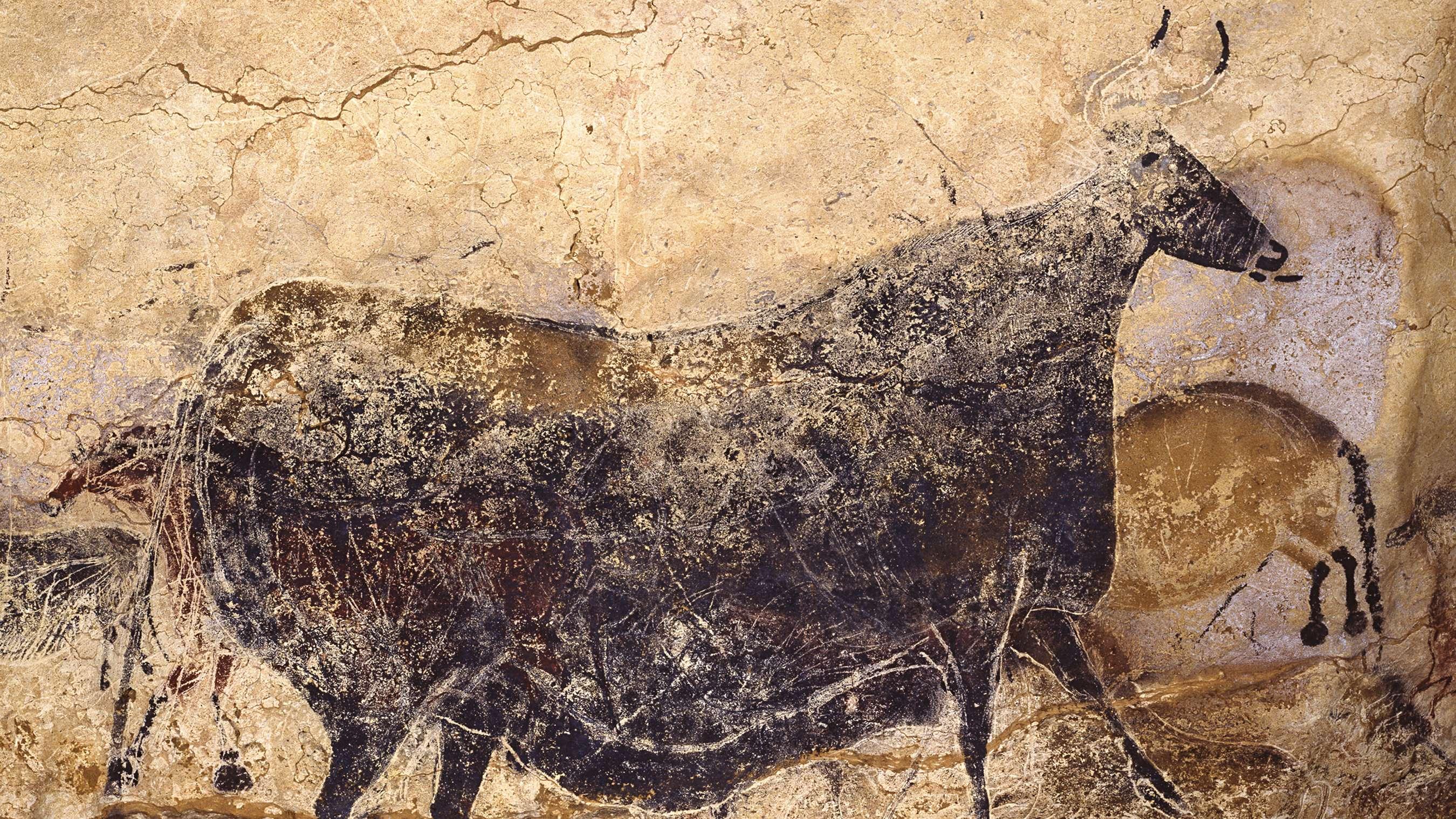 Reproduktion einer schwarzen Kuh der Höhlenmalereien von Lascaux.