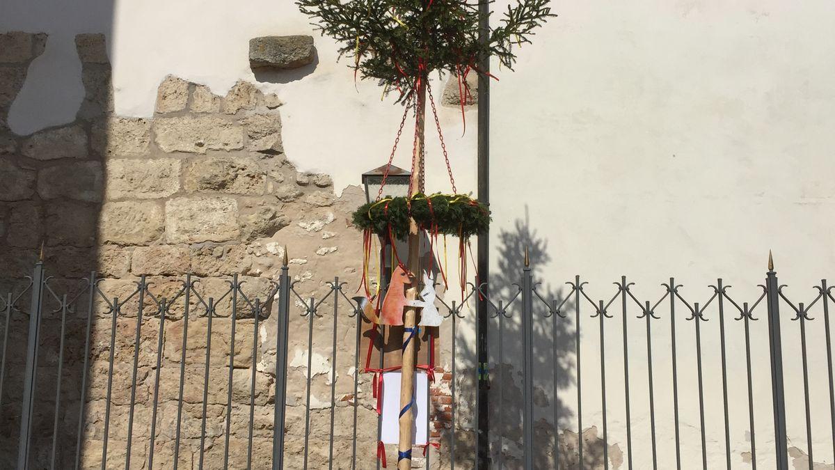 Der geklaute Maibaum steht jetzt wieder im Oettinger Schlosshof