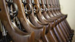 Jagdgewehre sind aufgereiht (Symbolbild) | Bild:pa/dpa
