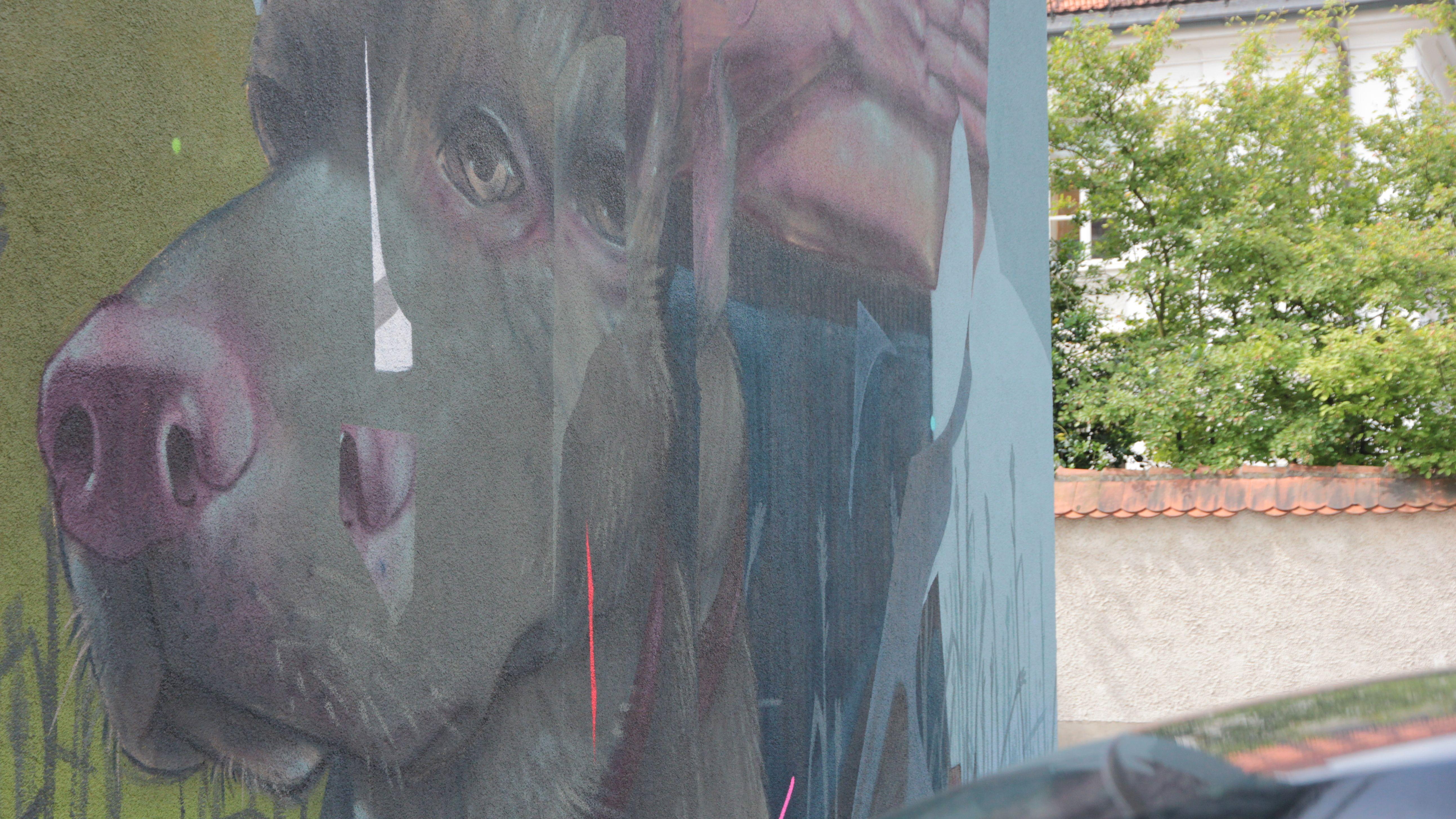 Hund von Mr. Woodland (Daniel Westermeier) im Dr. Ulrich-Weg 1 in Erding.