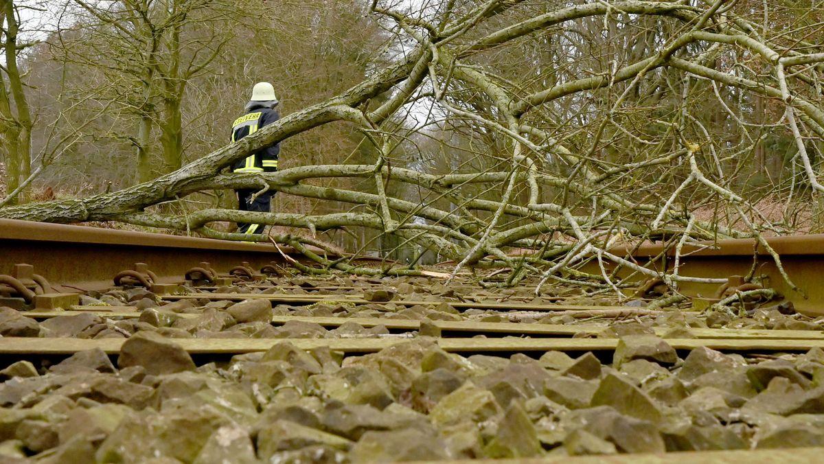Ein umgestürzter Baum liegt auf einem Bahngleis.