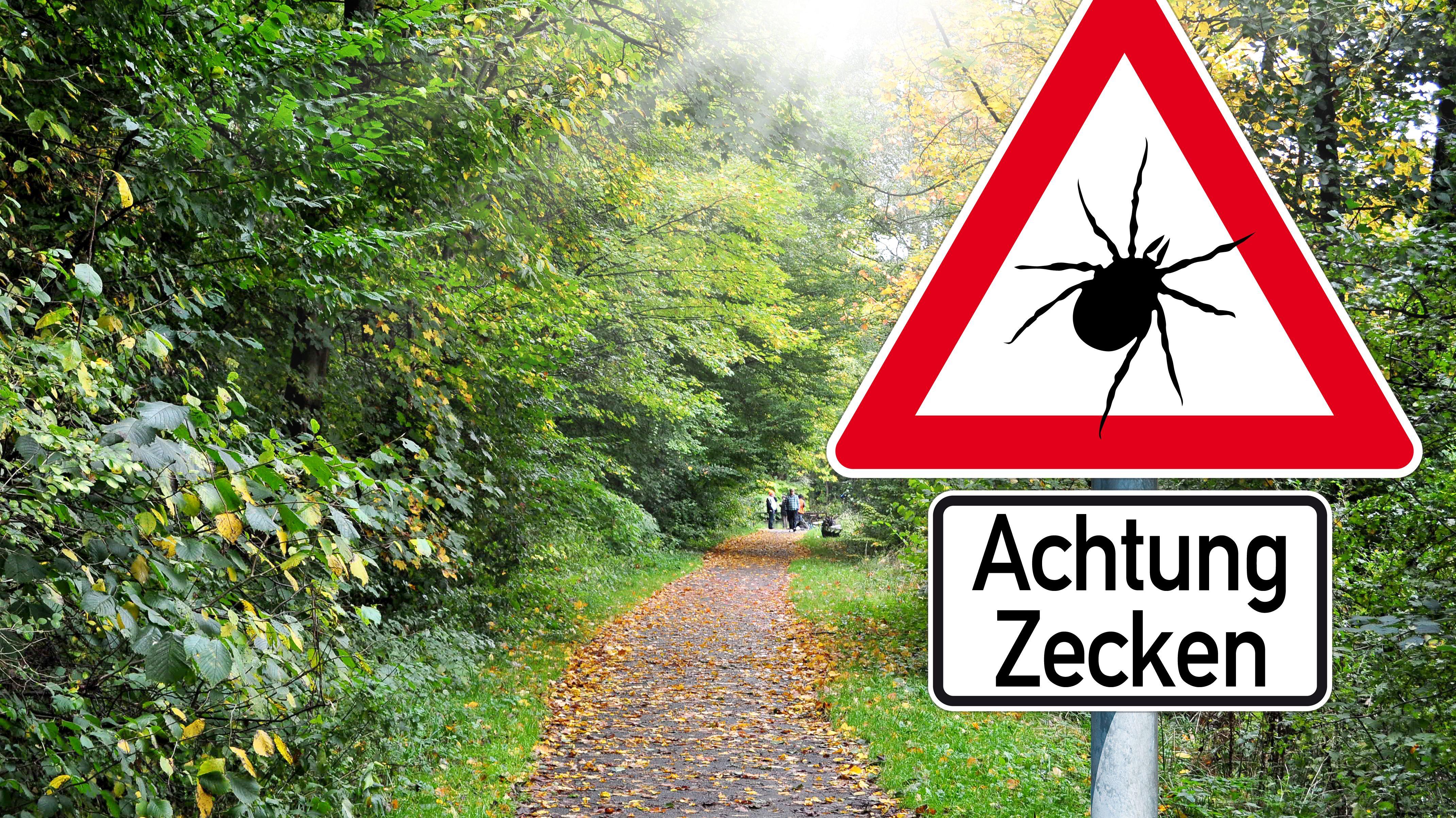 Waldweg und Hinweisschild: Achung Zecken!