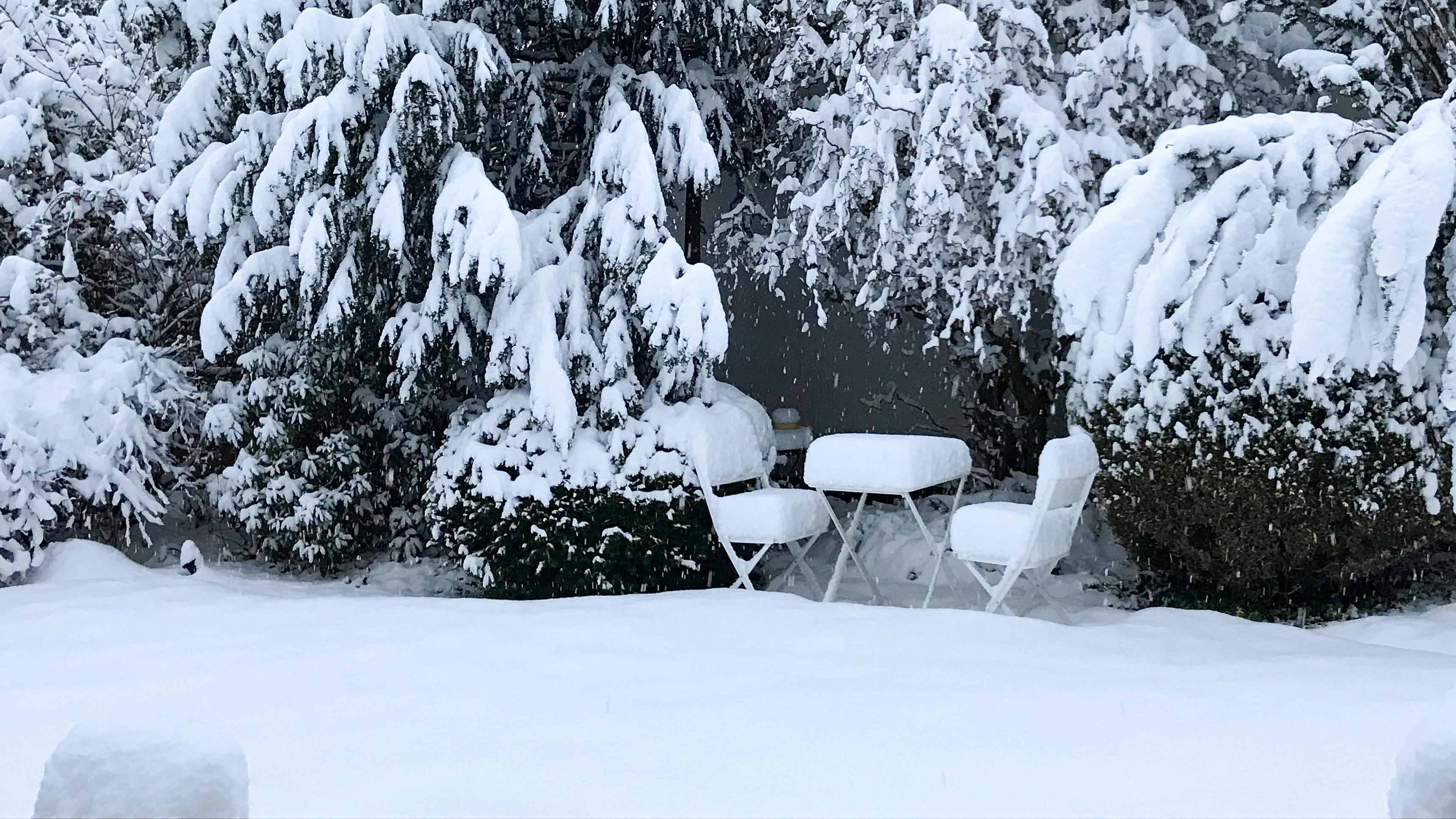 Gartenstühle im Schnee